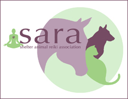 Check out SARA at: shelteranimalreikiassociation.org